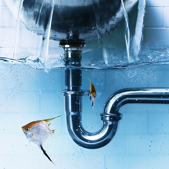 6 Things you need to do to avert unexpected plumbing problems
