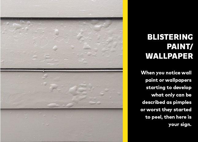 Blistering Paint/Wallpaper