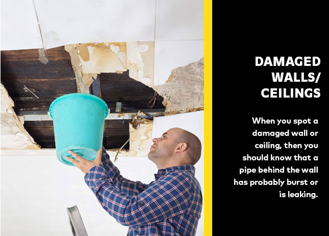Damaged Walls/ Ceilings