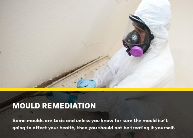 Mould remediation