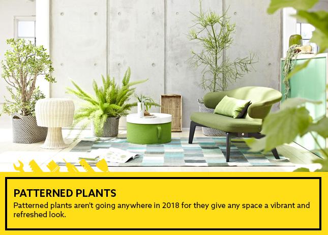 Patterned Plants
