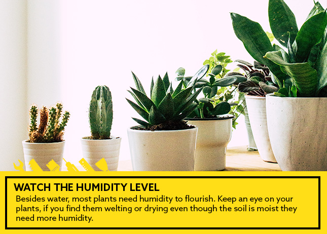 Watch the humidity level