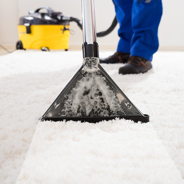 Carpet cleaning: Discover the different ways to clean your carpets